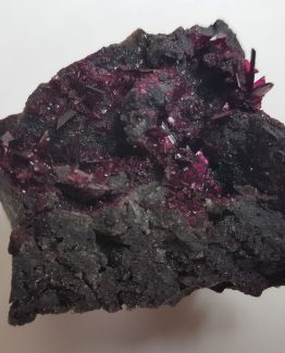 Highly elegant erythrite specimen on matrix, with superb gem crystals of intense color and luster.