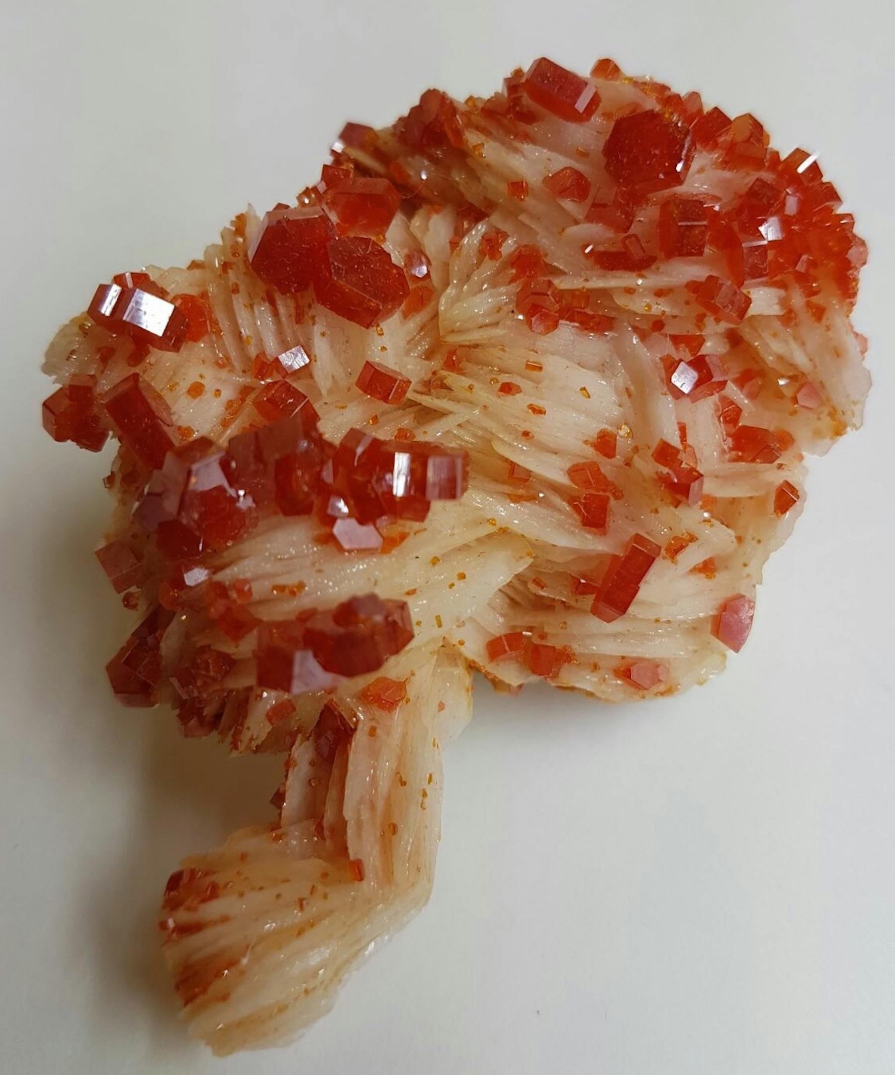 Beautiful crystals of Vanadinite on Baryte matrix.