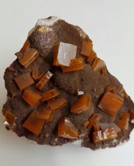 Wulfenite on matrix, with well-defined floater crystals.