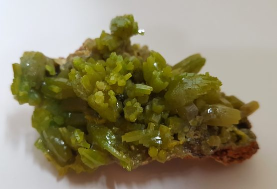 Pyromorphite crystal aggregate of intense color and brilliancy.