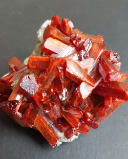 Realgar crystal aggregate on matrix, of intense red color and great luster.