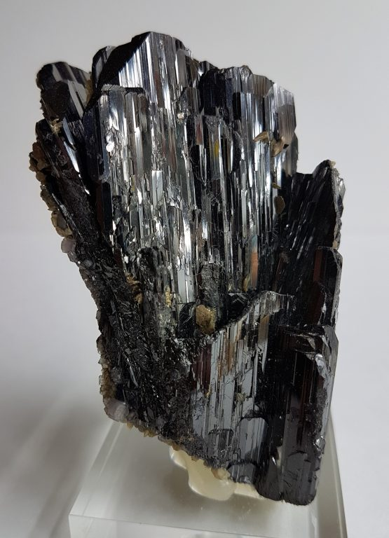 Excellent and well-defined group of Wolframite crystals with Siderite.