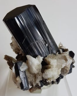 Schorl Tourmaline on Albite and Muscovite matrix.