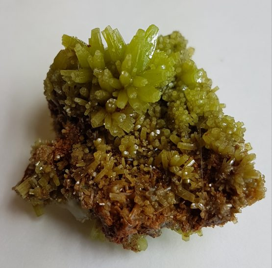 Pyromorphite on matrix, with perfectly defined crystals.