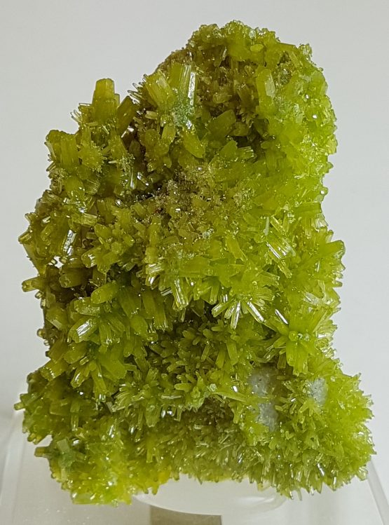 Superb aggregate of Pyromorphite crystals.