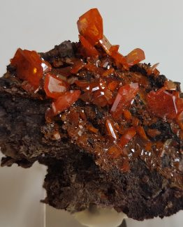Perfectly defined crystals of Wulfenite from Red Cloud mine, on matrix.