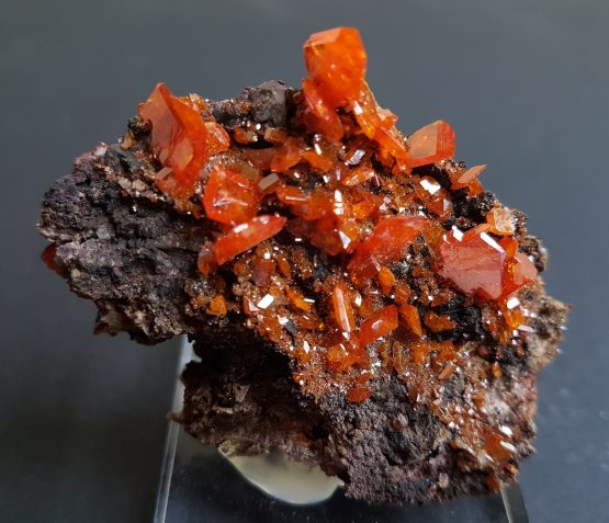 Wulfenite from Red Cloud mine, on matrix