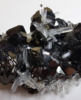 Aggregate of Sphalerite and Quartz crystals.