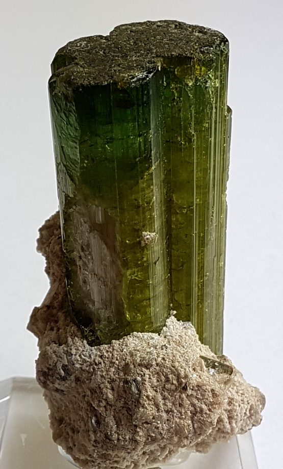 Tourmaline crystal, on matrix