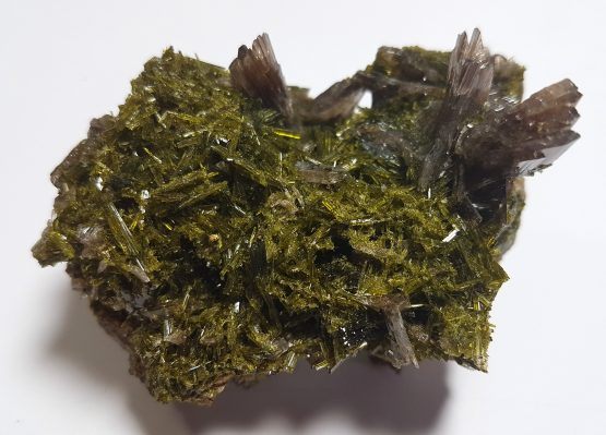 Very sharp Axinite crystals on a multitude of small gem crystals of green Epidote.