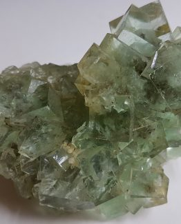 Attractive druse of green Fluorite cubic crystals.