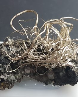 Attractive Native Silver specimen with numerous curved and bright filaments on Acantite matrix.