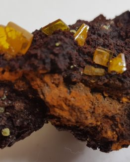 Small isolated crystals of Wulfenite and some Mimetite spheres, on Hematite matrix.