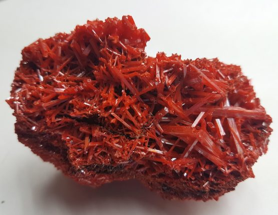 Dense group of thin intertwined and perfectly defined Crocoite crystals.