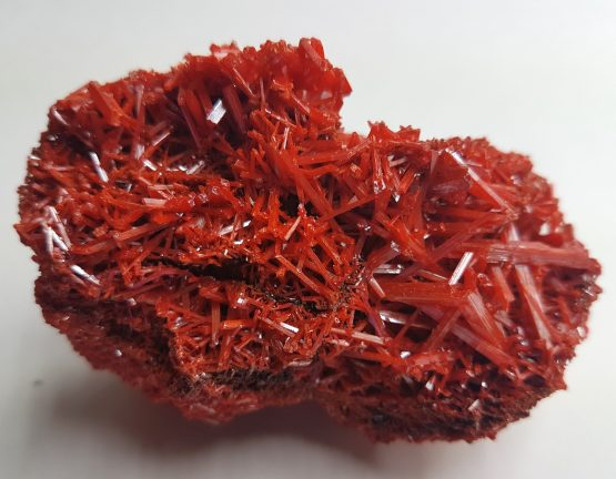 Group of thin intertwined and perfectly defined Crocoite crystals.