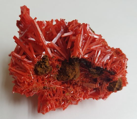 Aggregate of Crocoite crystals.