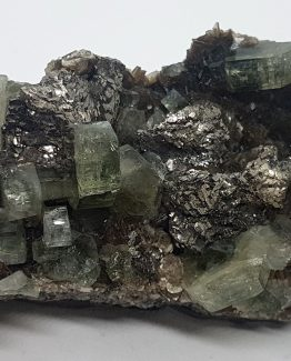 Fluorapatite, Arsenopyrite, and Quartz on Muscovite matrix.