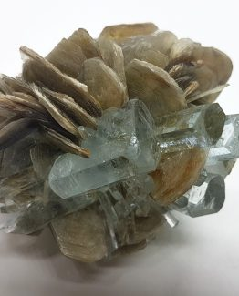 Highly shining and transparent Beryl var Aquamarine crystals on Muscovite matrix.